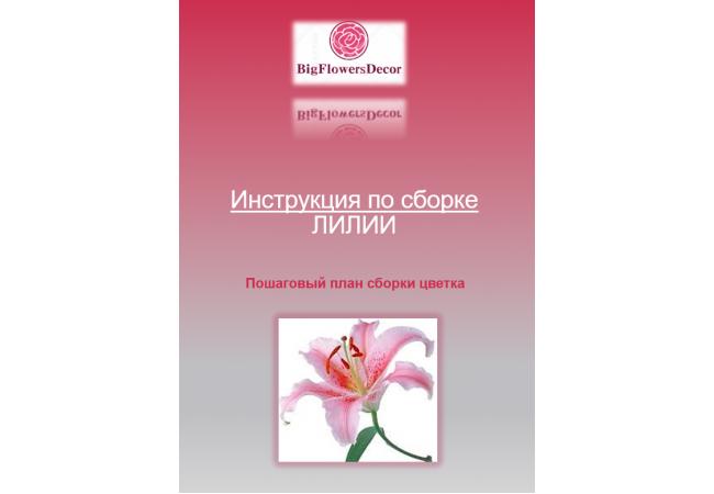 Инструкция по сборке ЛИЛИИ D50см