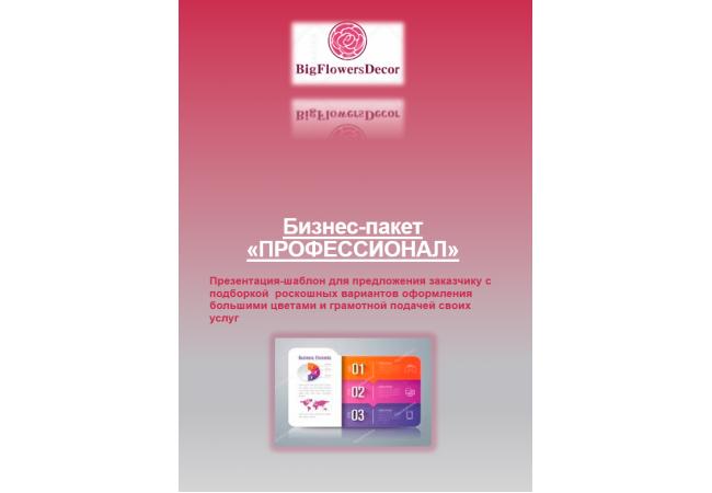 Инструкция для декоратора пакет «ПРОФЕССИОНАЛ»