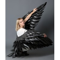 """№04 Крылья черные вертикаль """"АВА"""""""