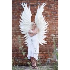 """№02 Белые крылья Ангела вертикаль """"ВИКТОРИ"""""""