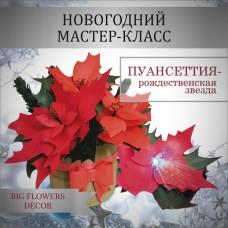 МК Новогодние декорации, пуансеттия