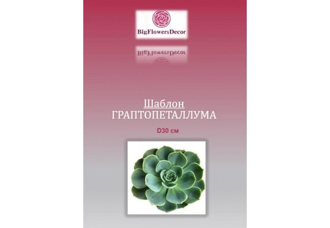 Шаблон цветка ГРАПТОПЕТАЛЛУМА D30см