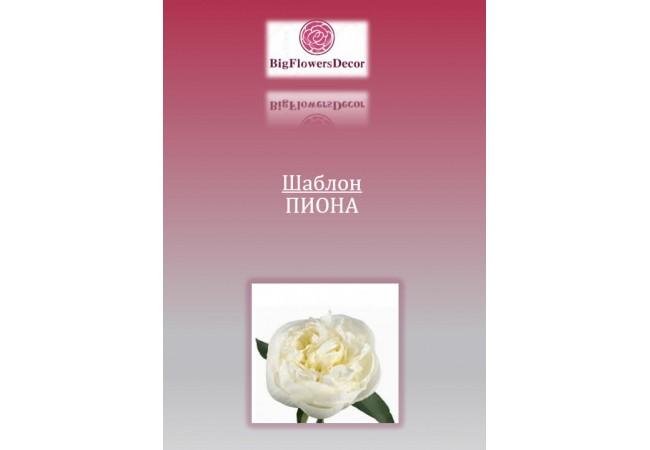 Шаблон цветка ПИОНА D50см